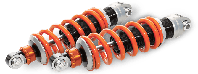 $20 OFF Shock Absorber and Strut Assembly