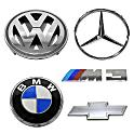 Mercedes Benz 220SE Emblem
