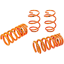 410-301002-N Control Series Lowering Springs - 1.125 in., 1.25 in., Set of 4