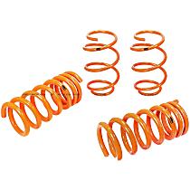Control Series Lowering Springs - 1.125 in., 1.25 in., Set of 4