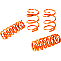 410-503001-N Control PFADT Series Lowering Springs - 1 in., 1 in., Set of 4