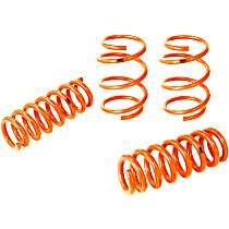 Control PFADT Series Lowering Springs - 1 in., 1 in., Set of 4