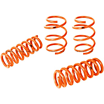 410-503002-N Control PFADT Series Lowering Springs - 1 in., 1 in., Set of 4