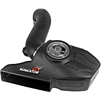 50-70036D Power Momentum GT Pro Dry S Series Cold Air Intake