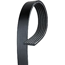 6K555 Serpentine Belt - Fan belt, Direct Fit, Sold individually