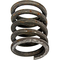 251-807 Exhaust Spring - Direct Fit
