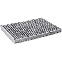 C3871WS Cabin Air Filter