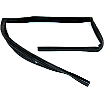 G1017 Weatherstrip Seal - Rear, Passenger Side, Glass Weatherstripping, Direct Fit, Sold individually