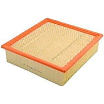 CA10262 Fram Extra Guard CA10262 Air Filter