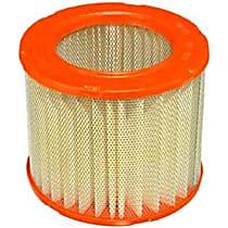 CA3924 Fram Extra Guard CA3924 Air Filter