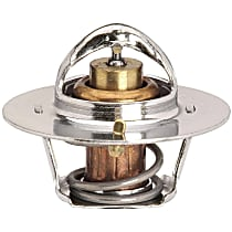 33479S Thermostat