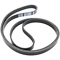 Drive Belt - Main Drive, Serpentine belt
