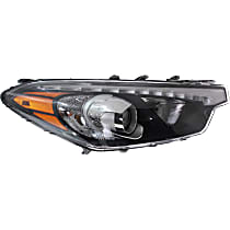 Passenger Side HID/Xenon Headlight, With bulb(s)