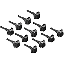 Ignition Coil - Set of 12