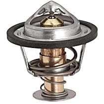 13899 Thermostat