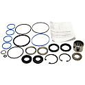 Steering Gearbox Repair Kit